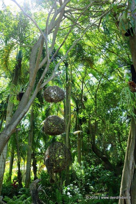 the Nature at Paradisus Punta Cana