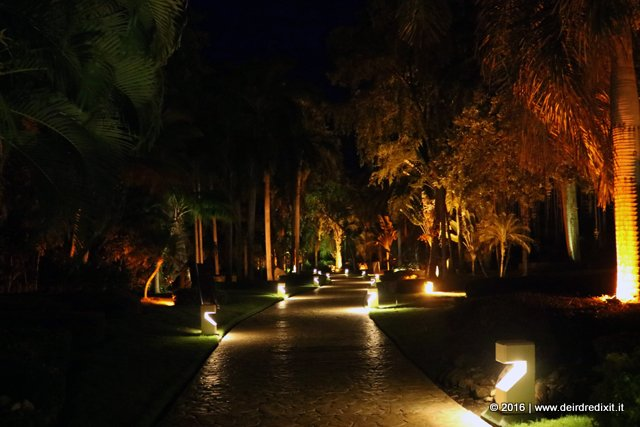 Nature by night at Paradisus Punta Cana