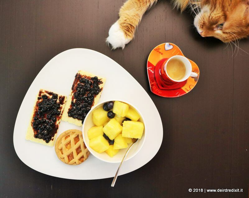 colazione con prodotti giusto giuliani senza glutine