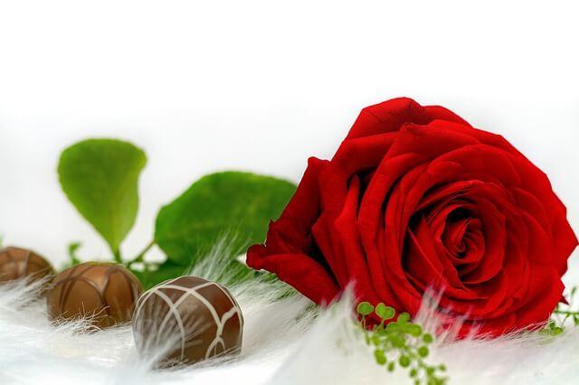 rose cioccolatini